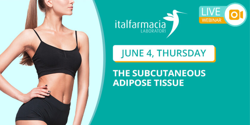 webinar 8 – THE SUBCUTANEOUS ADIPOSE TISSUE (save the date)
